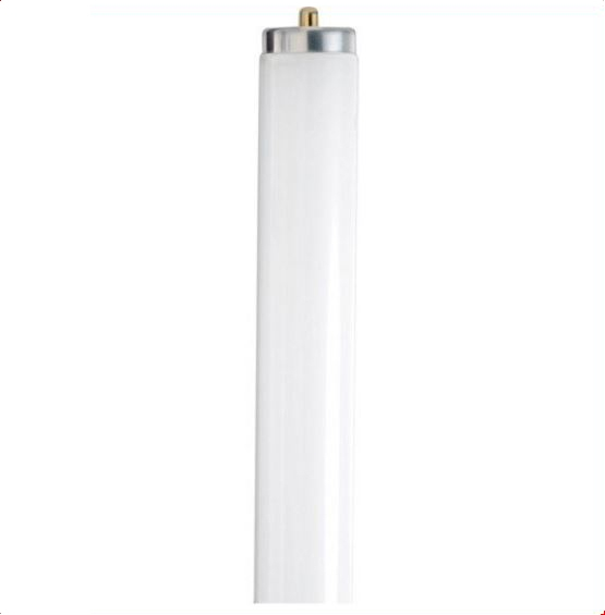 Fluorescent Tube 4 ft T8 - Natural Light (5000K)