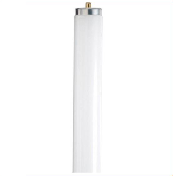 Fluorescent 6 Ft T12 55watt