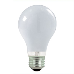 Incandescent A19 40 watt 2 pack