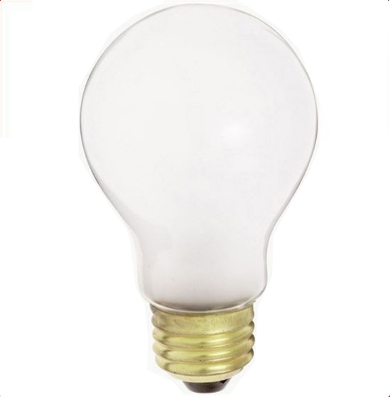 Incandescent A19 Bulb Frosted
