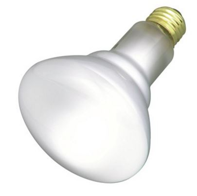BR30 Incandescent - Frosted